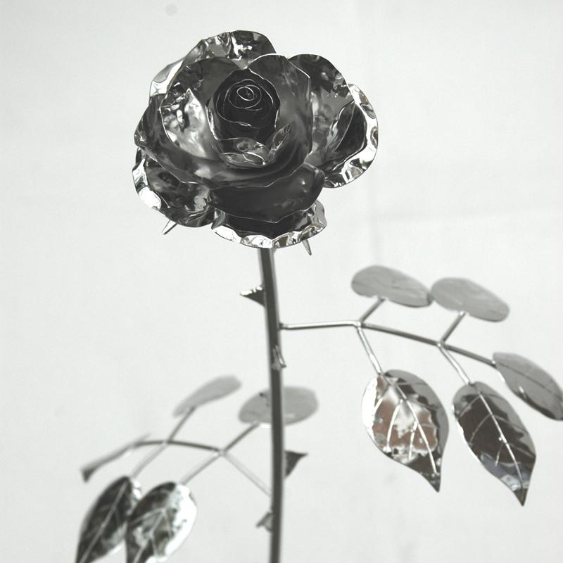 Edelrose (11)