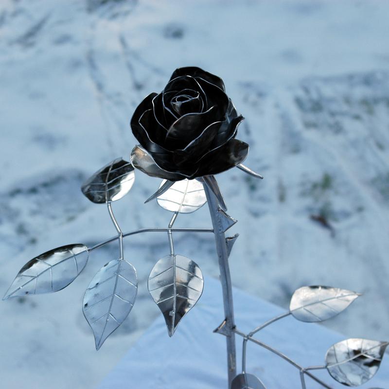 Rose_12 (2)