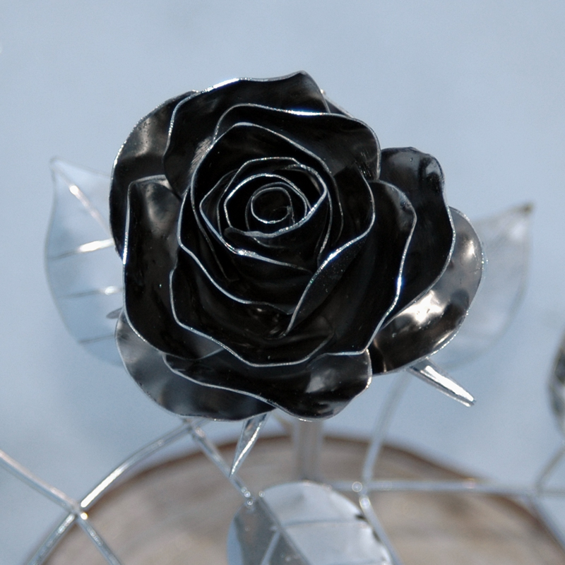 Rose_12 (0)