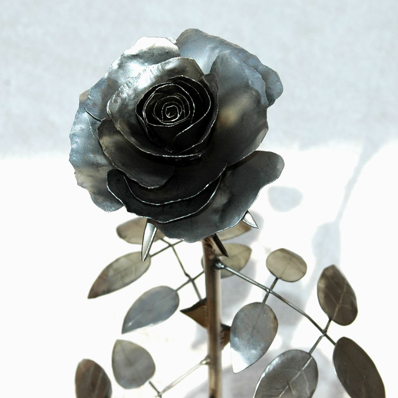 Rose_matt_03