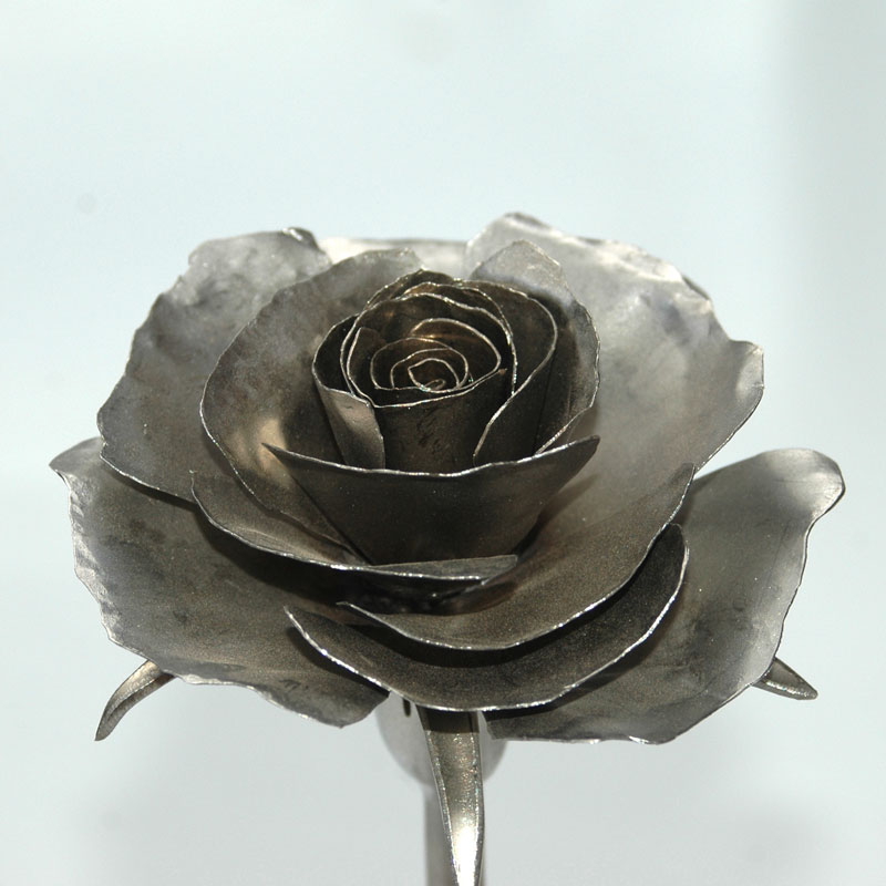 Rose_matt_04