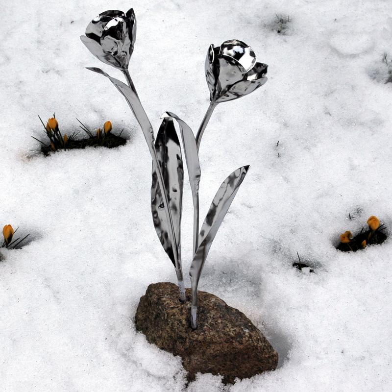 Tulpen (10)